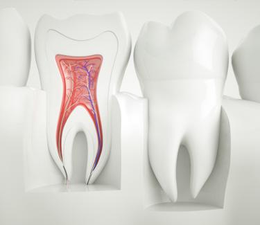 mobile headeri lijecenje zuba